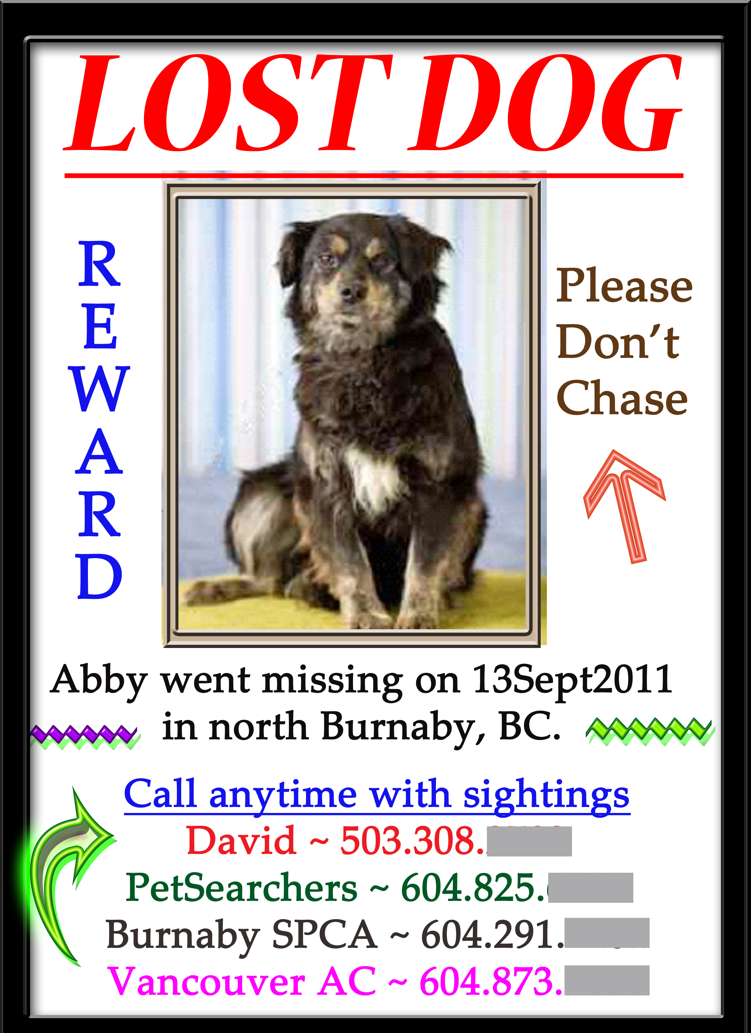 Capturing At Large/lost/missing Dogs  Missing Dog Flyer Template